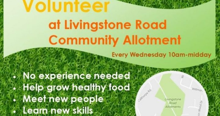 Flyer Livingstone Road Event