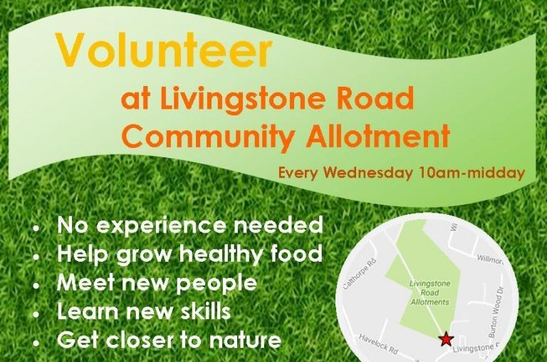Flyer Livingstone Road Event