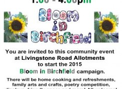 Spring Fete to launch Bloom in Birchfield